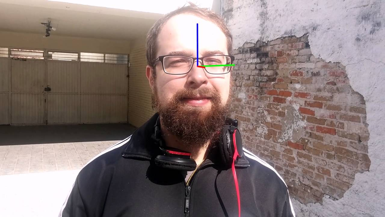 Extracting face orientation in real-time