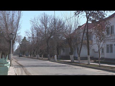 В Михайловке на самоизоляции под наблюдением медиков находятся более 40 человек