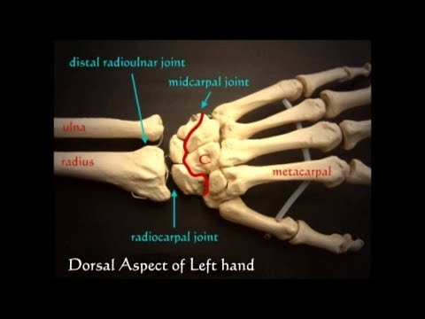 articulation of joints ,in simple methods part =1.
