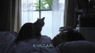映画『キミとボク』DVD レンタル&セル発売中 October 2011 DVD release...
