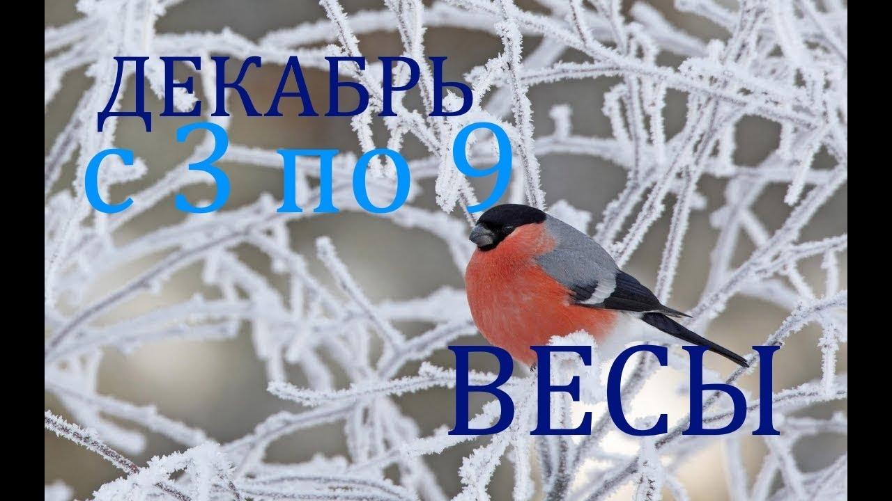 ВЕСЫ.ТАРО-ПРОГНОЗ на НЕДЕЛЮ с 3 по 9 ДЕКАБРЯ 2018г.