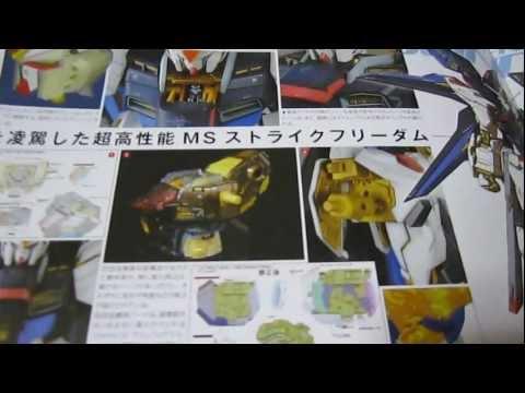 PG Strike Freedom (Part 3: Manuals) Gundam Seed Destiny gunpla review