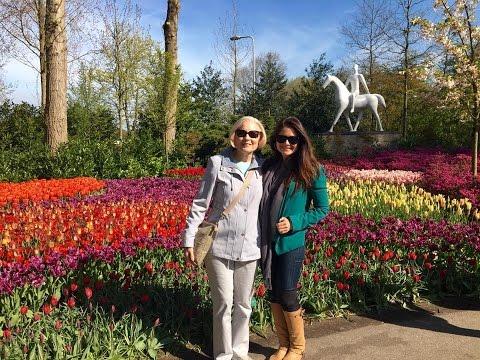 Tulips And Windmills Viking River Cruise