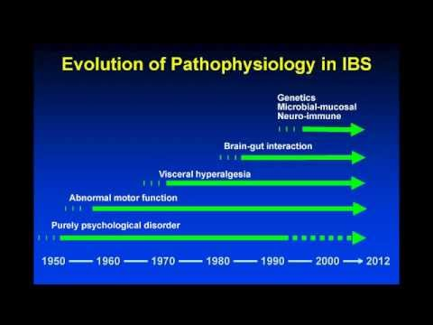 Pathophysiology of IBS and Common FGIDs — Lin Chang, MD, AGAF