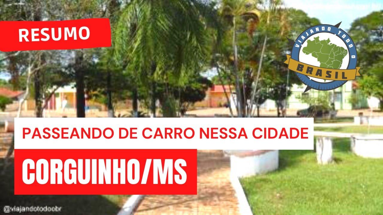 Corguinho Mato Grosso do Sul fonte: i.ytimg.com