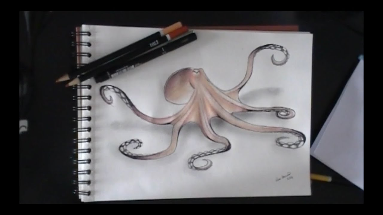 Uncategorized Drawing Of An Octopus drawing an octopus youtube