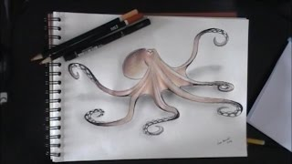Drawing an octopus