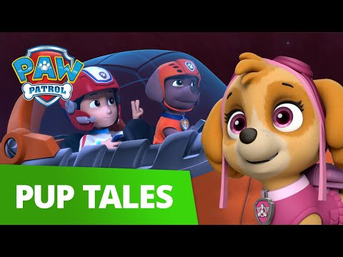 Underwater CRASH! Pups Save the Whale Pod! 🐳 PAW Patrol Pup Tales Rescue Episode!