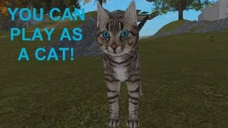THE BEST GAME I HAVE EVER PLAYED ON ROBLOX! (YOU CAN PLAY AS A CAT)
