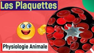 Les Plaquettes Sanguines ou Les Thrombocytes