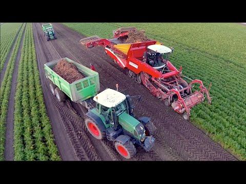 Potato / Carrot and Celeriac harvest / Oogst 2014 - Vrolijk Landbouw | Grimme Tectron 415