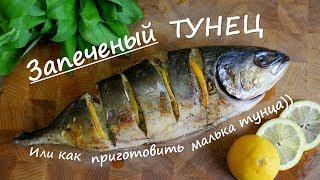 Как приготовить ТУНЕЦ / МАЛЕК ТУНЦА В ДУХОВКЕ)))