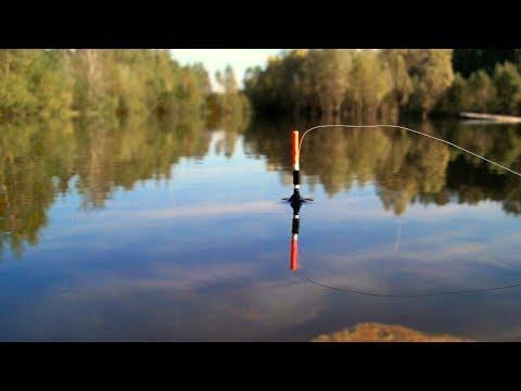 летняя рыбалка онлайн