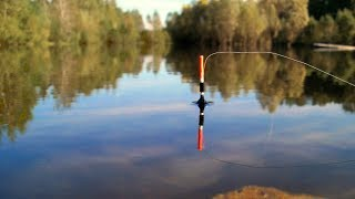 КАРАСЬ СОШЁЛ С УМА Ловля карася на удочку Летняя рыбалка