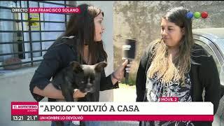 El regreso de Apolo: familia recuperó a perro robado