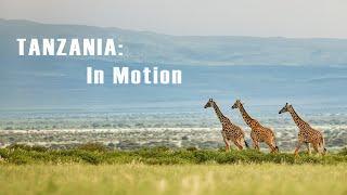 Tanzania & Zanzibar    Safari - Adventure - vacation   
