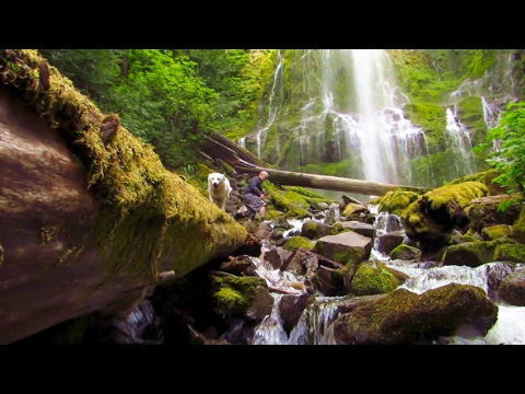 Virtual Hike: Deep Forest Waterfall - Rock Music - 20min (#6D)