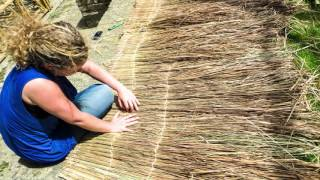 Natural materials in the construction sector