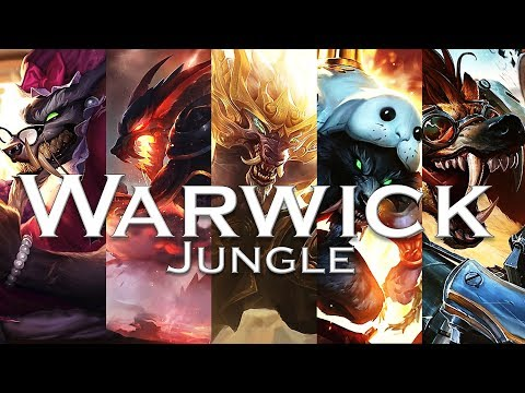 Beginner's Guide to Warwick Jungle