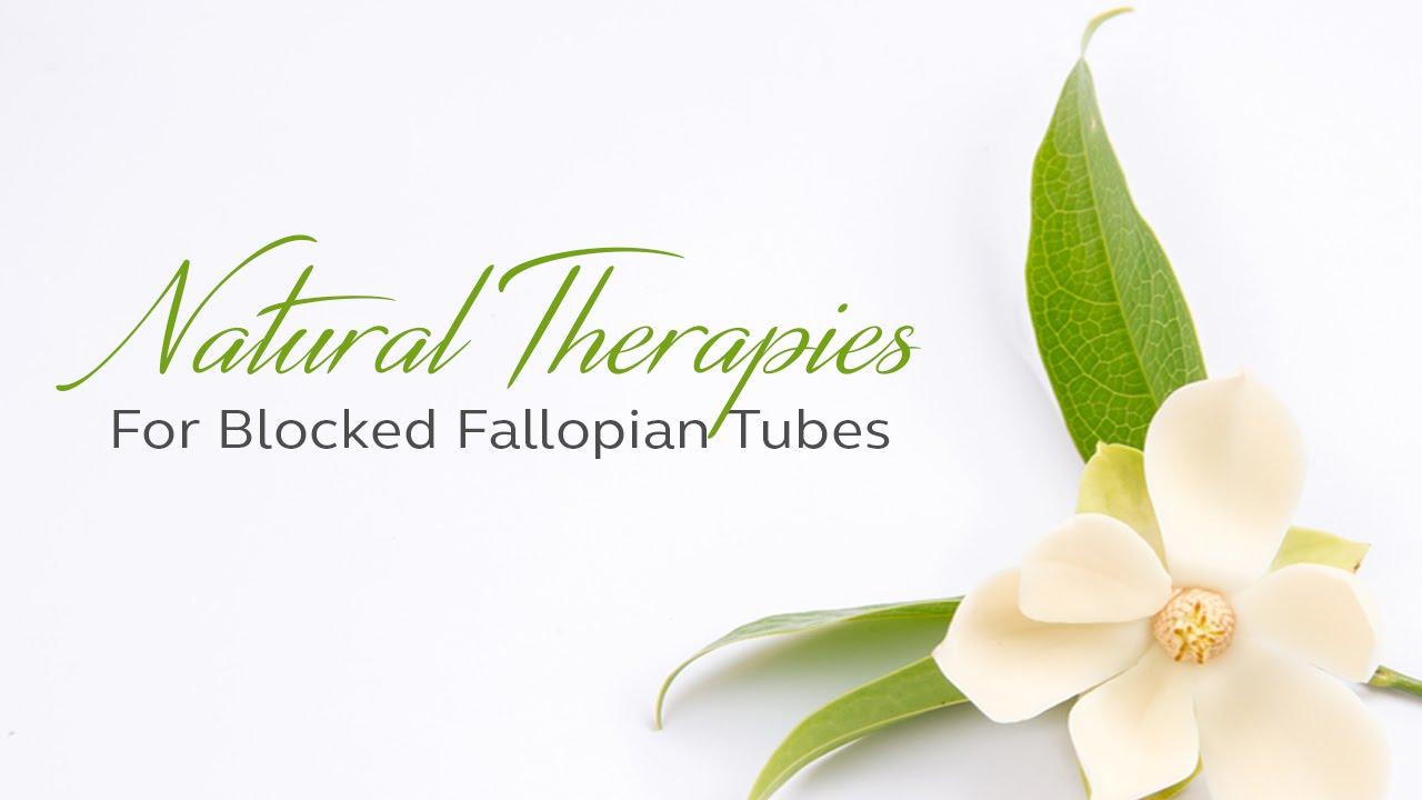 Natural Fertility Info Com Blocked Fallopian Tubes