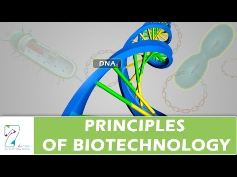 PRINCIPLES OF BIOTECHNOLOGY
