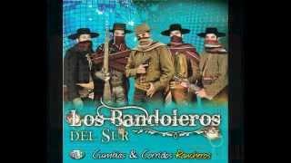 LOS BANDOLEROS DEL SUR   5ta PRODUCCION   Cumbias y Corridos Rancheros