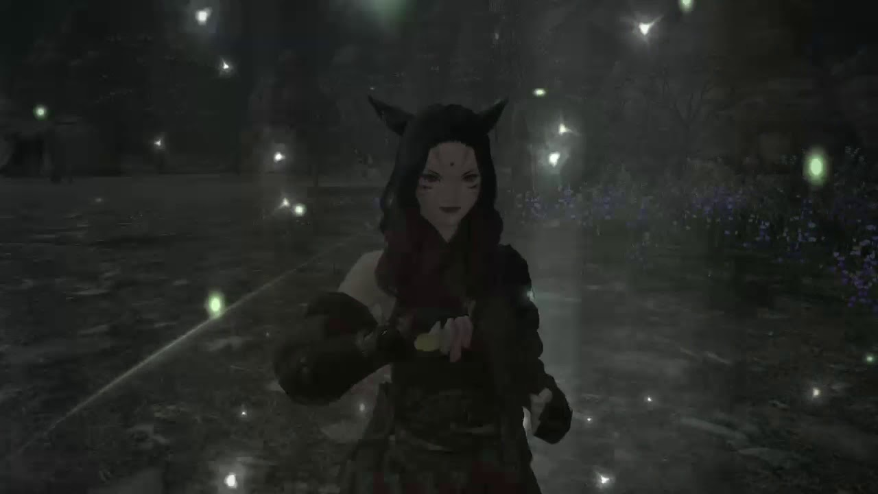 [PS4]Final Fantasy XIV(Monk)(The Power to Protect)