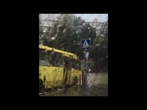 Дождь в Хосте