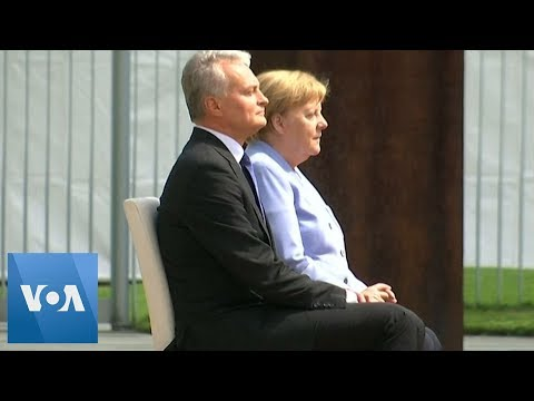 After Repeated Shaking Bouts, Angela Merkel Sits for Military Honors