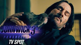 "John Wick: Chapter 3 – Parabellum (2019 Movie) Official TV Spot ""Dogs"" – Keanu Reeves, Halle Berry"