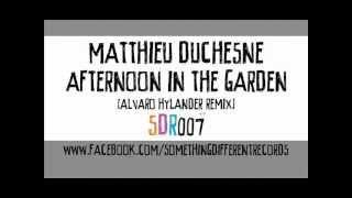 [SDR007] Matthieu Duchesne - Afternoon In The Garden (Alvaro Hylander Remix)