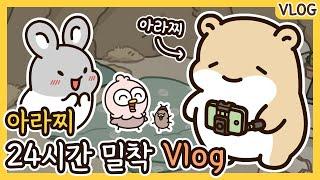 방구석 아라찌🐹   VLOG   아라찌의 24시간 밀착 브이로그   애니메이션/만화/햄스터/animation/cartoon/hamster