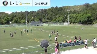 NZ Football Live Stream