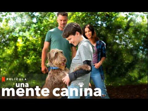 Una Mente Canina - Trailer en Español Latino l Netflix