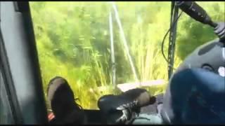 Loonbedrijf Winkelhorst uit Rekken aan het hennep hakselen met Claas 870 Trekkerweb