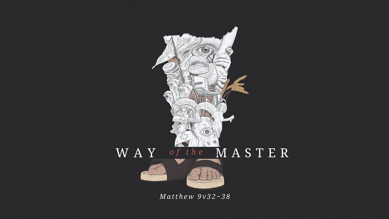 Way of the Master 11 | The harvest is plentiful Cover Image