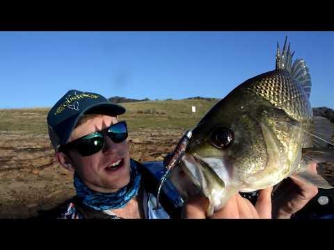 Lake St Clair Spring Bass Fishing Part 3 (50CM Bass)