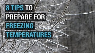 8 tips to prepare for freezing temperatures