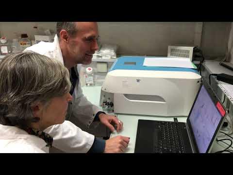 VIH-1 : Des Reservoirs Découverts Pour La Première Fois Dans Les Macrophages