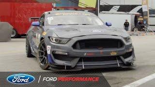All-New Mustang Dominates Qualifying: 2017 Continental Tire at Daytona   IMSA   Ford Performance