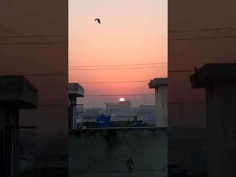 Sunrise At Lahore Today