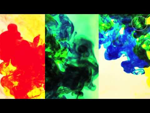Kasket - Warm Regards (Offical Video)