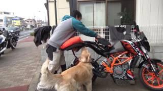 KTM390DUKEの新車時付属品が面白いので犬と紹介します
