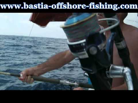 "Requin peau bleue en ""big game"" par Bastia Offshore Fishing Club"