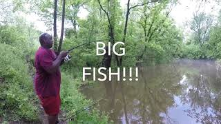 Channel Catfishing w/ Experimental Bait (30lb+ Limit!!!)