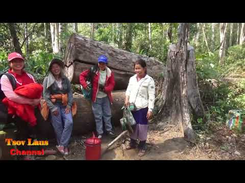 Hmong @ Laos Fishing & Outdoor Cooking 2018 Part 1