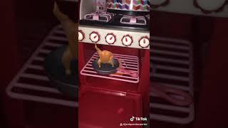 Turkey is dancing in my Dolls oven (tik tok video