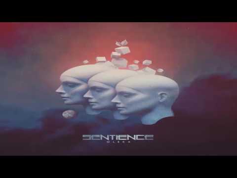 Sentience - Enigma
