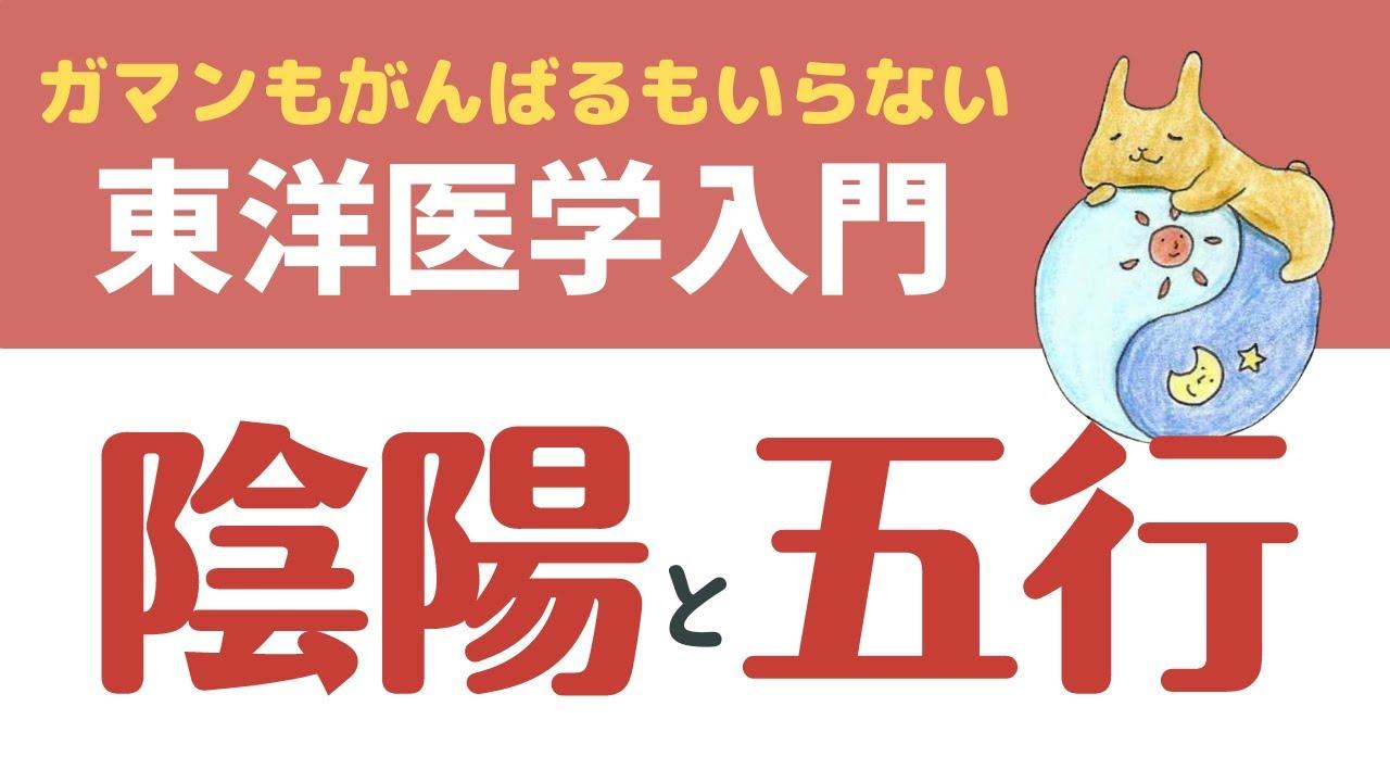 【動画】東洋医学入門~キホンのキ~