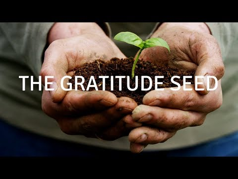 The gratitude seed (VOICE) A guided meditation for sleep and healing